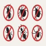 Εντομοκτόνα & Εντομοαπωθητικά Χώρου